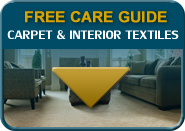 carpet care guide